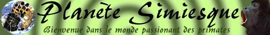 http://planete.simiesque.free.fr